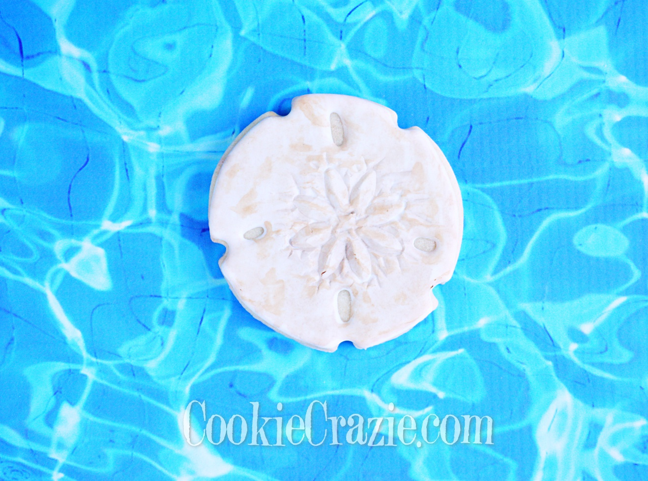 Sand Dollar Decorated Sugar Cookie YouTube video  HERE