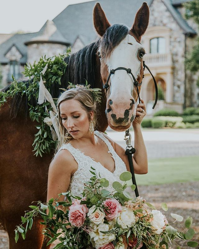This styled shoot I photographed was featured on @weddingchicks and I realized I never posted about it! I temporarily put the link in my bio if you want to check out the feature 😊 We had such a great team of vendors!  Planning & Design: @heatherbengeevents  Venue: @thefarmathighshoals  Flowers: @thorneandthistle @flowersbyyona  Makeup: @lovettabeauty  Hair: @_diondriamarie_  Gown: @ashleyjustinbride  Horse: Classic City Clydesdales Styling details: @lovebirdsvintage  Model: @sunkissedscripts