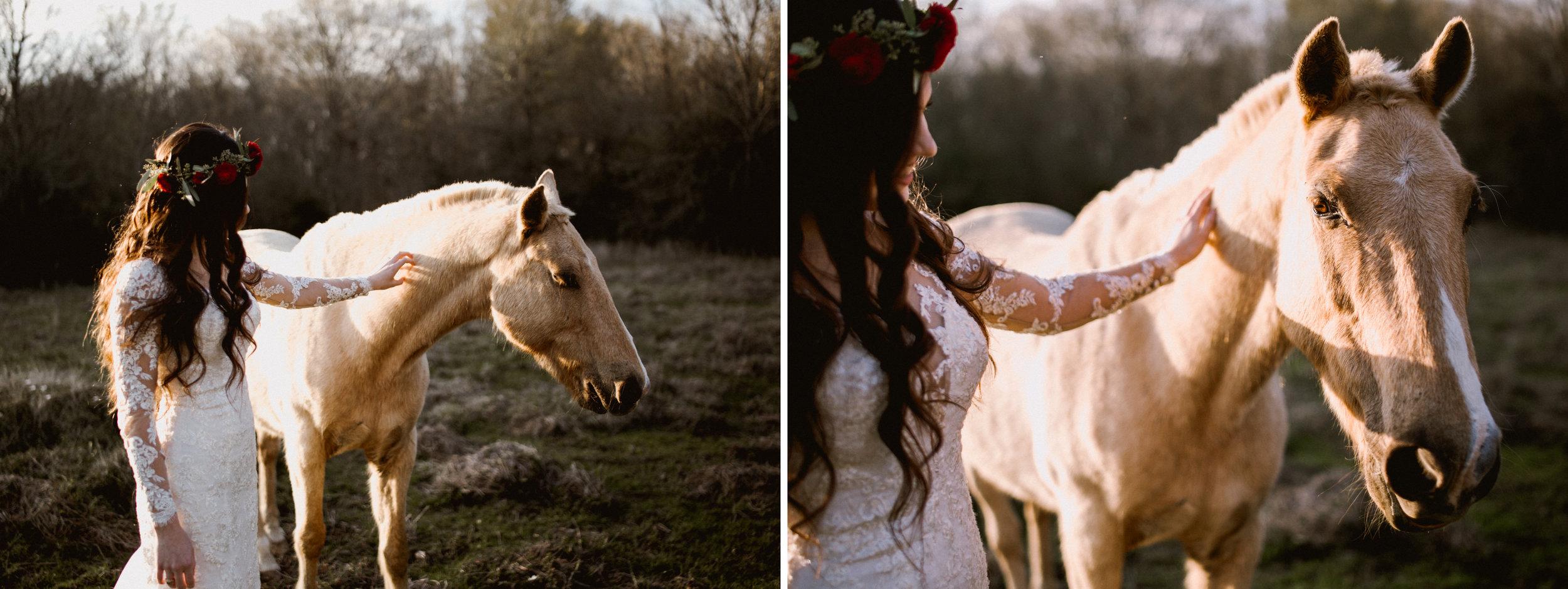 karah the horse whisperer.jpg