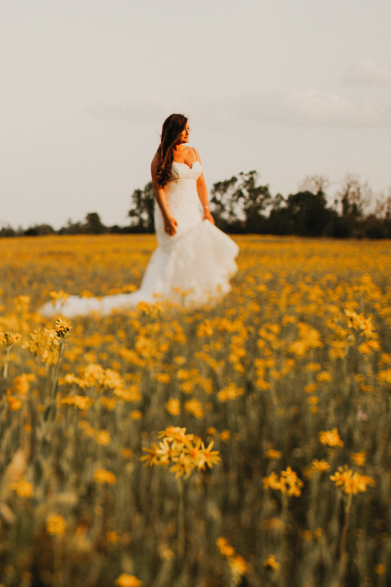 Skylar Yellow Field Bridals (77).jpg