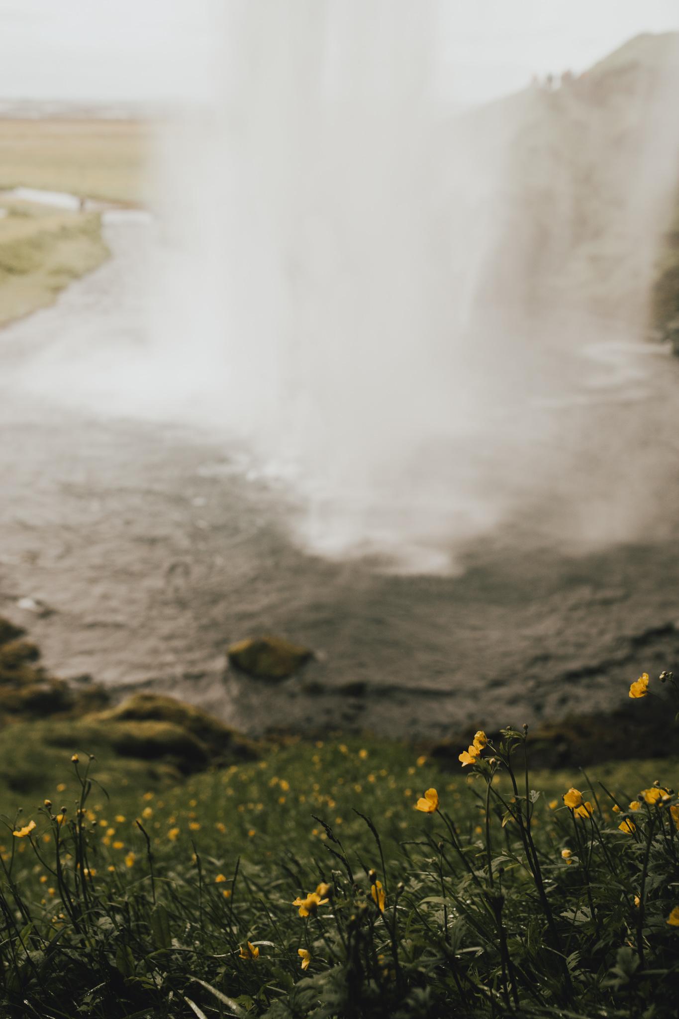 Iceland Southern Coast-159.jpg