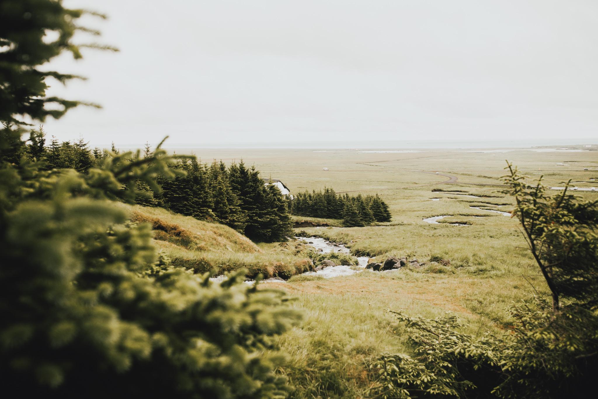 Iceland with Joe-53.jpg
