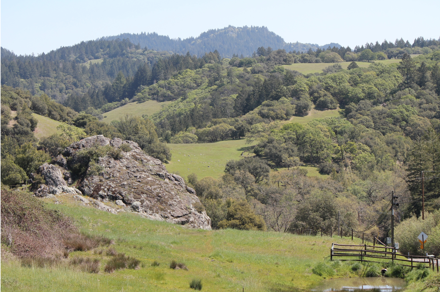 Oak Woodlands, Santa Rosa, CA
