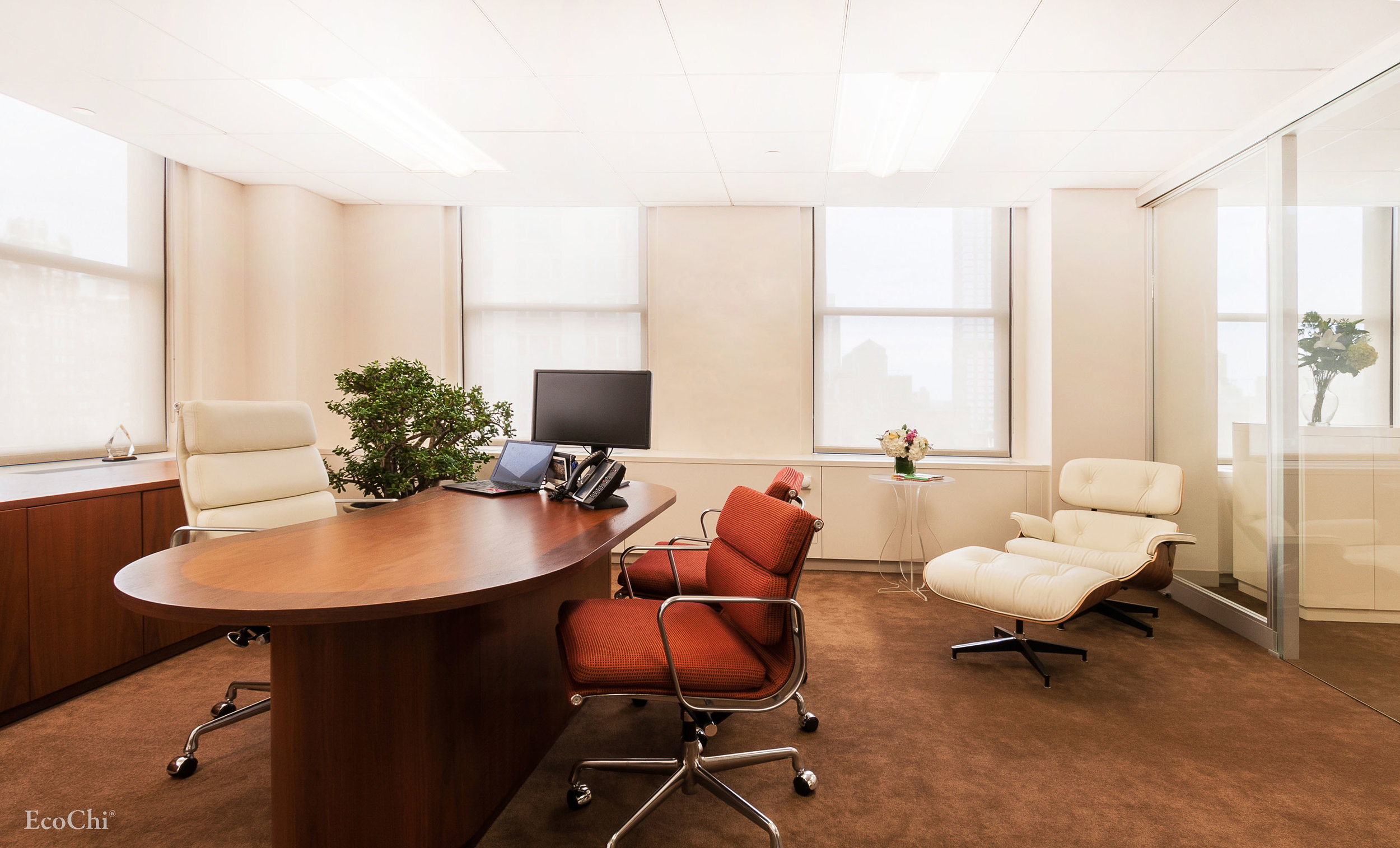 CEO OFFICE- FLAGSHIP OFFICE MANHATTAN