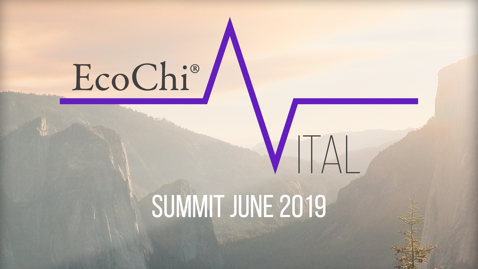 """EcoChi Vital Summit June 2019 """"Cracking the Code"""" - Moderator & Coordinator: Debra Duneier, EcoChi President & Founder, Coordinator: Denise Pezzulo, EcoChi Vice President. Monday June 17th, 2019 9:00am-3:00pm- At Steelcase NYC- Influential thought-leaders from a variety of disciplines participate in a roundtable discussion of current research & studies, ancient knowledge & emerging trends."""