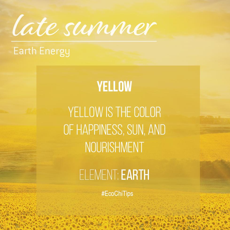 Summer Element Images_EcoChi Tips.jpg