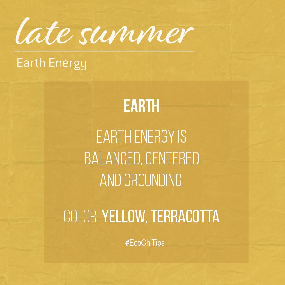 Summer Element Images_EcoChi Tips2.jpg