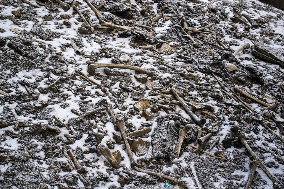 Human skeletal remains at Roopkund lake. A new genetic study partially identified some of the individuals: young and old, some interred long before others, none of them related. Credit: Himadri Sinha Roy