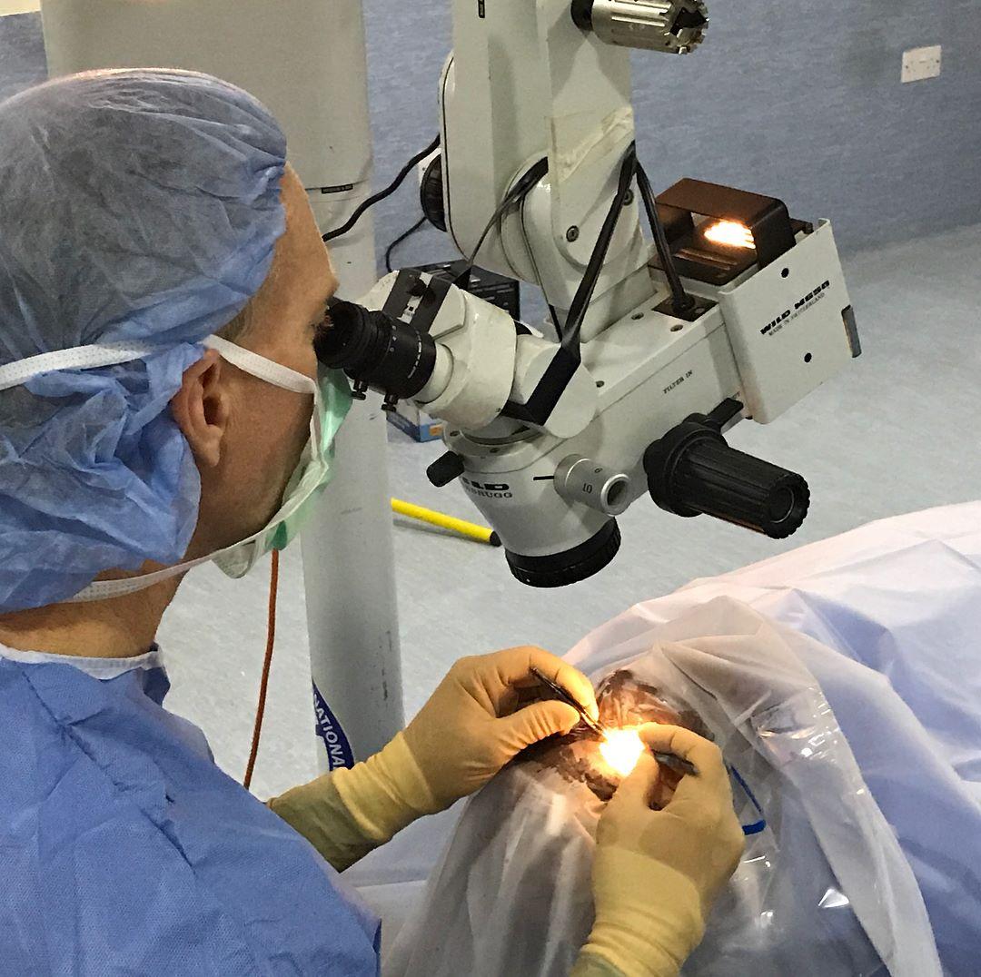 Dr. Teague performing surgery.jpg