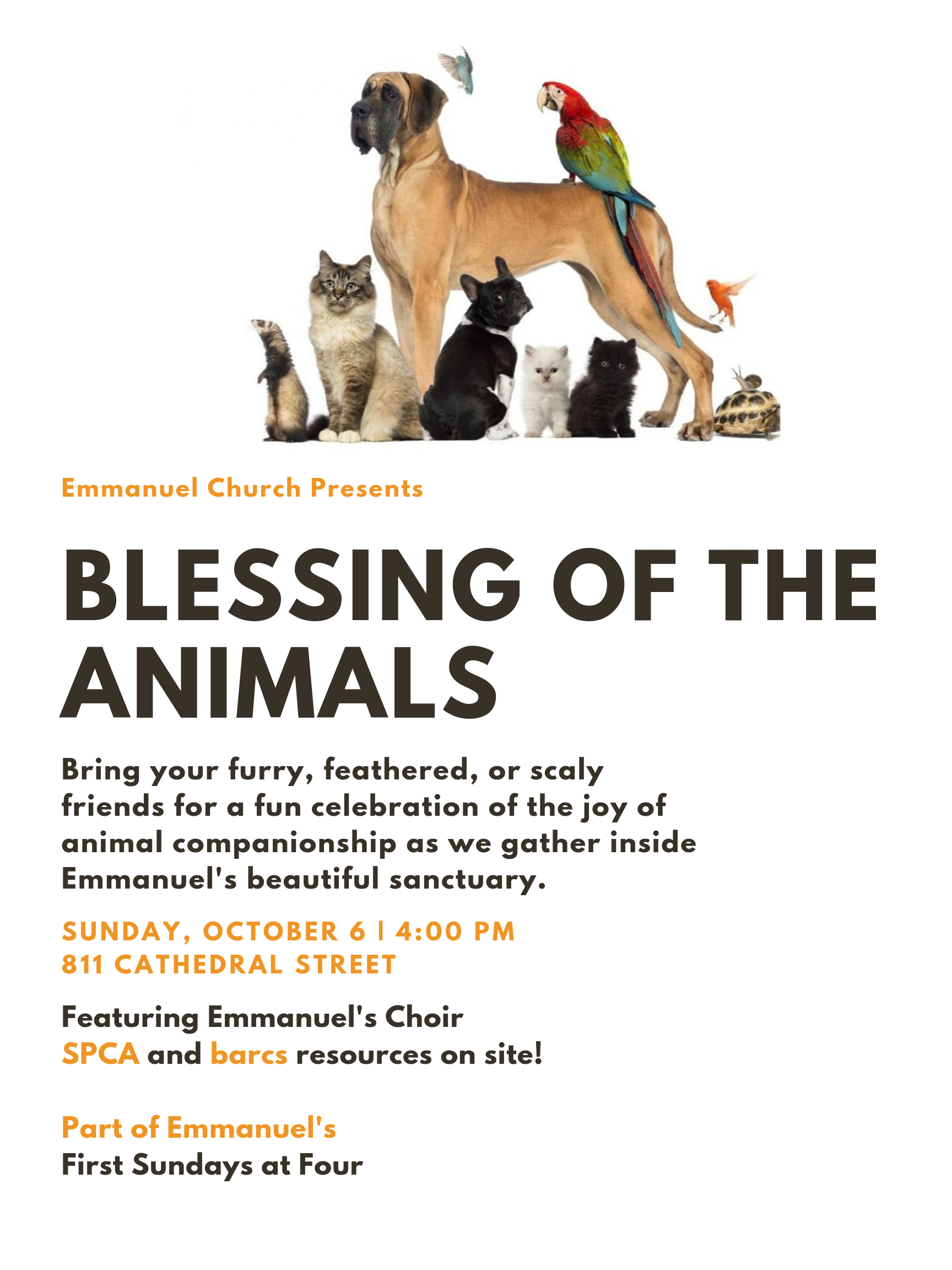 Blessing Animals 10-06-19.png