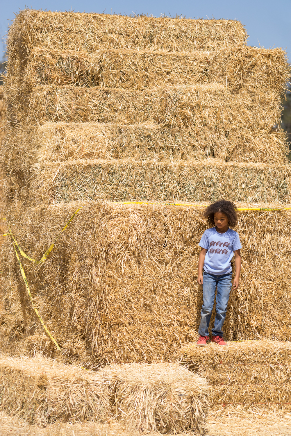 girl playing at the farm-SF Bay Area lifestyle photographs