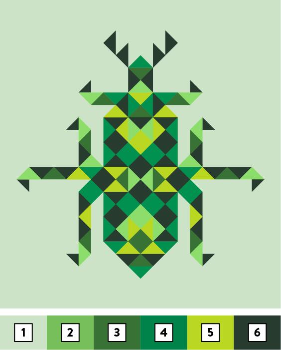 coleoptera-colors-04.jpg