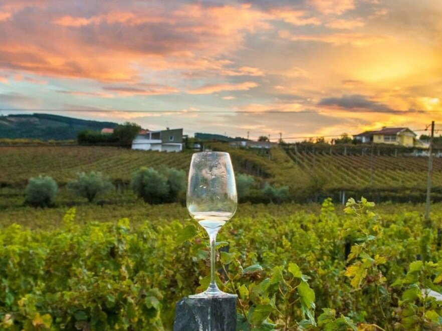 medium_Napa-Valley-Wine-Tours.jpg