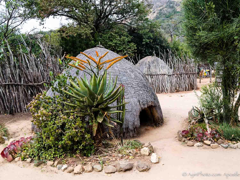 Zulu Witch Doctor House