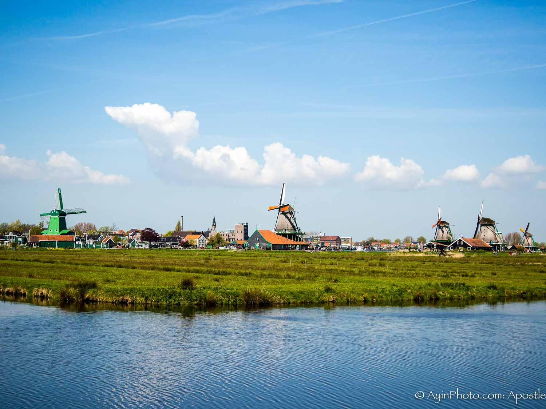 Windmill Farm-3155.jpg