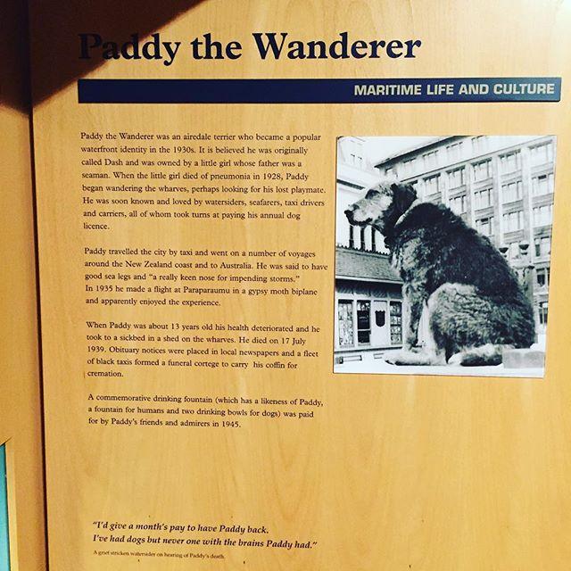 No YOU sobbed like a big Jessie in a mainly maritime museum. #wellingtonmuseum #Wellington #Newzealand