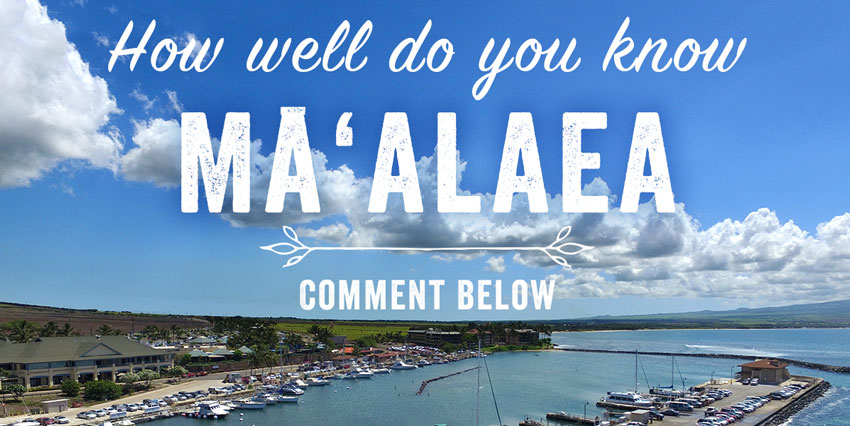 maalaea comments