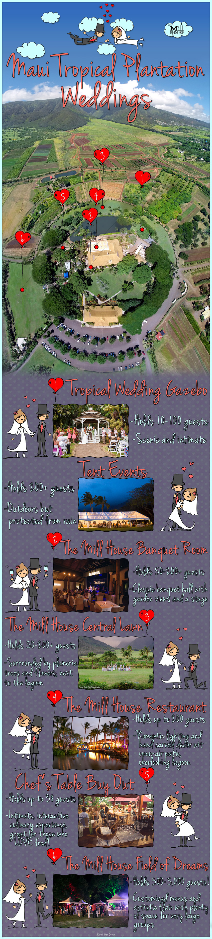 Maui Tropical Plantation Wedding Venue Infographics