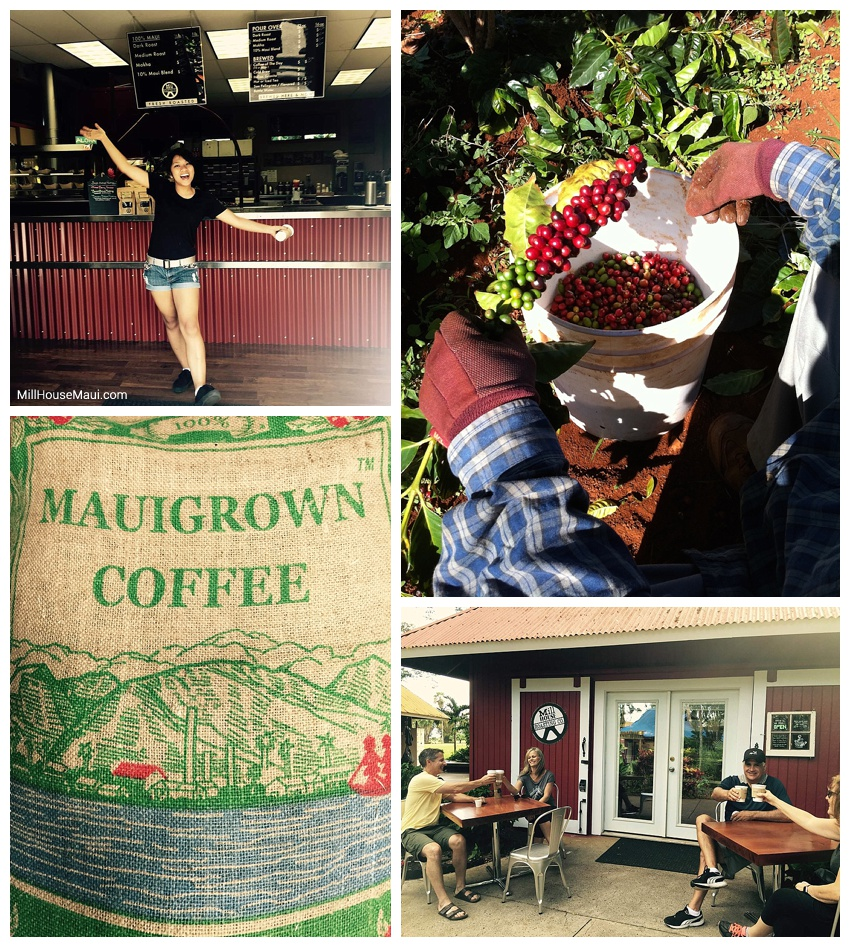 The Mill House Coffee Roasting Company maui
