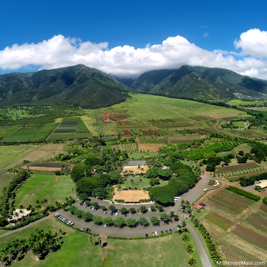 maui-tropical-plantation