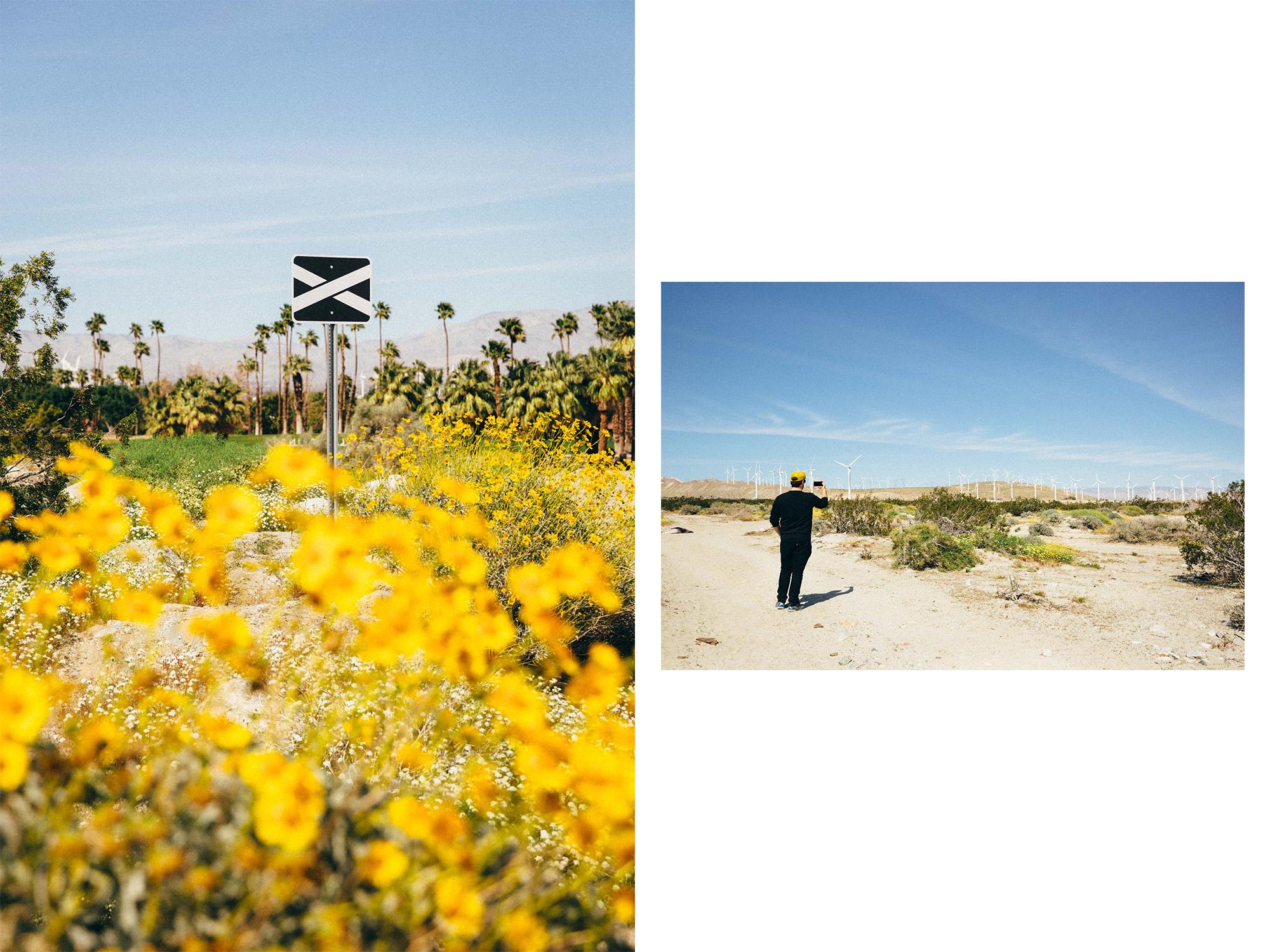 Desert X (Personal Work)