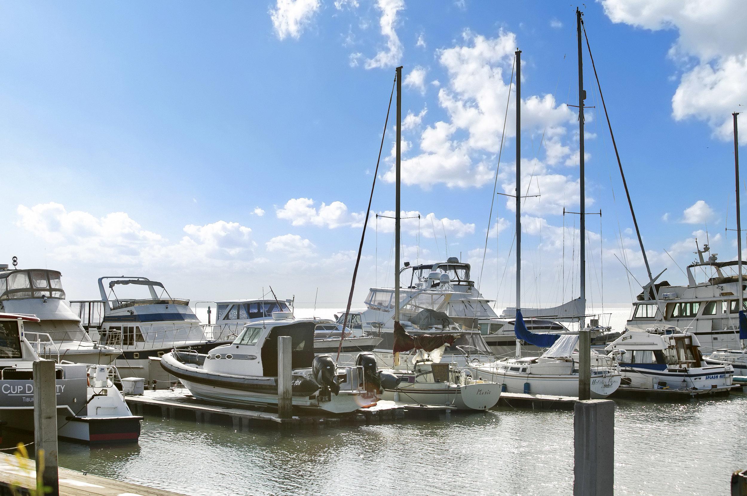 Paradis-Cay-Yacht-Harbor (1 of 10).jpg