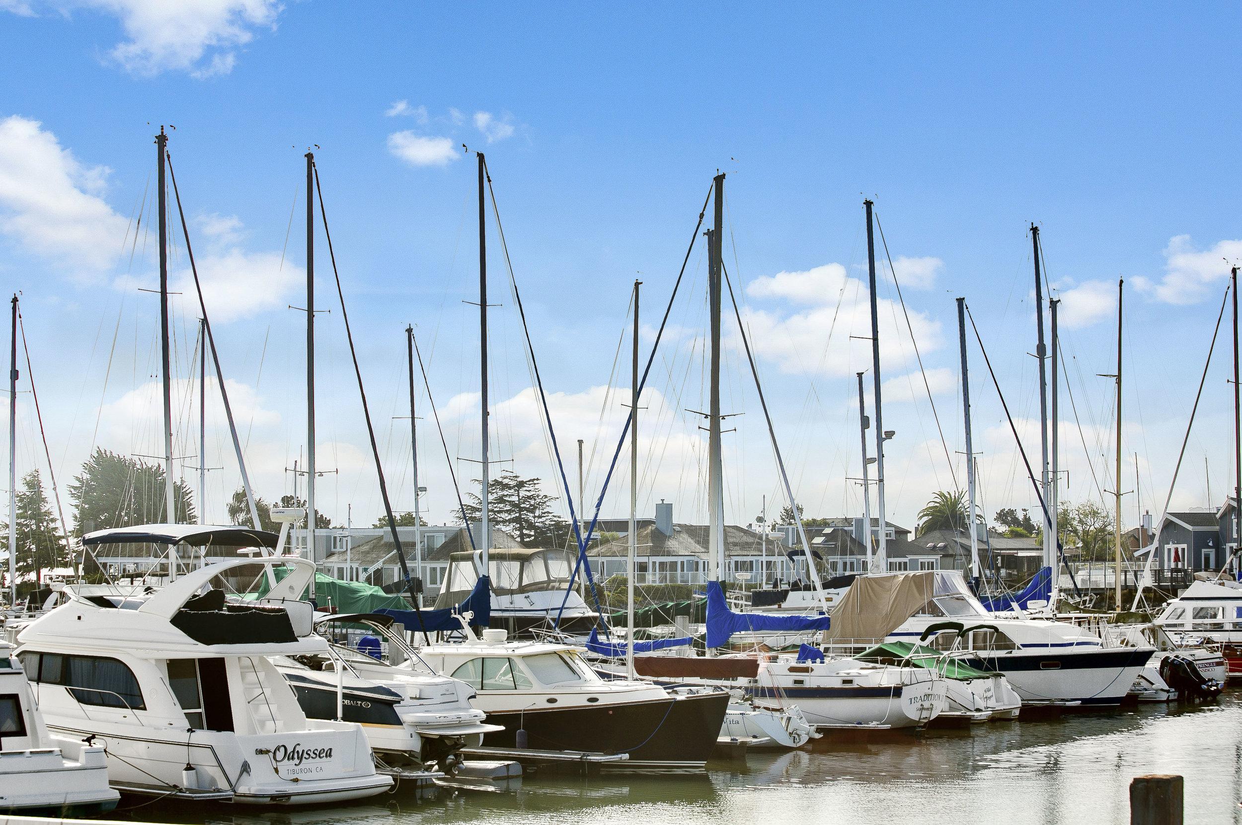 Paradis-Cay-Yacht-Harbor (3 of 10).jpg