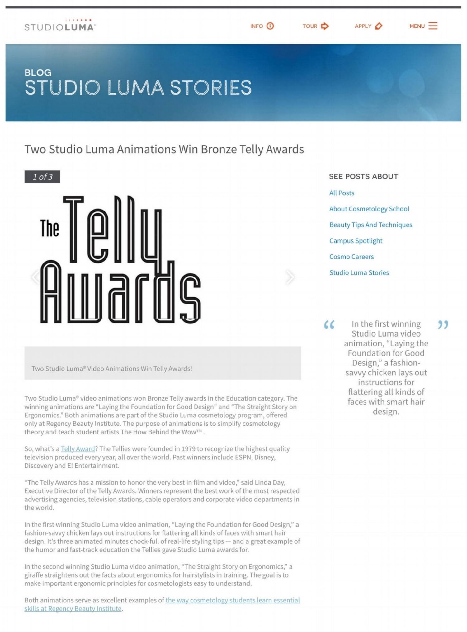 Telly Award.jpg
