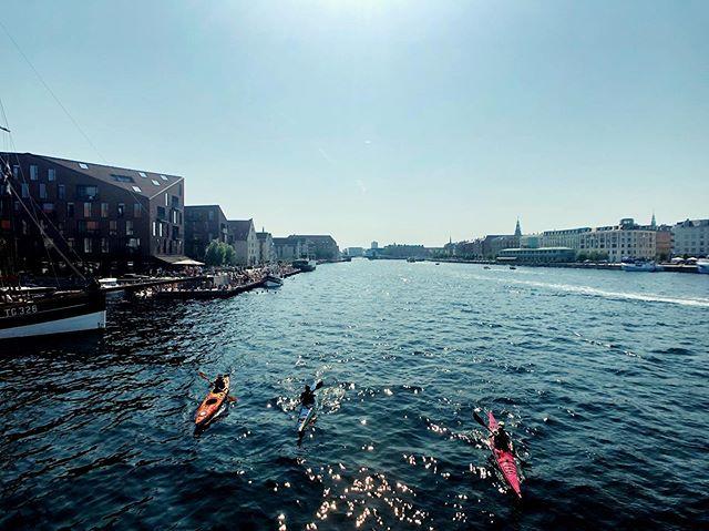 Flat city summer vibes ☀️ 🚣♂️ . . . #copenhagen #denmark #summer