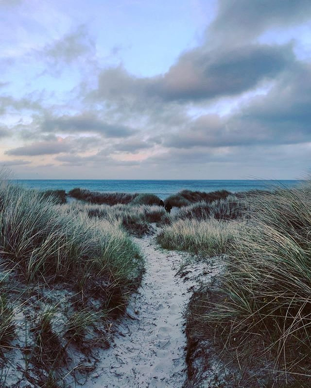 Sunset on the wrong side of Jutland. 🇩🇰 . . . . #travel #denmark #ålbæk #rejse #jylland #strand