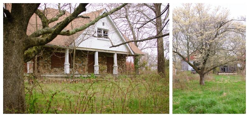 2012-04-03_010.jpg