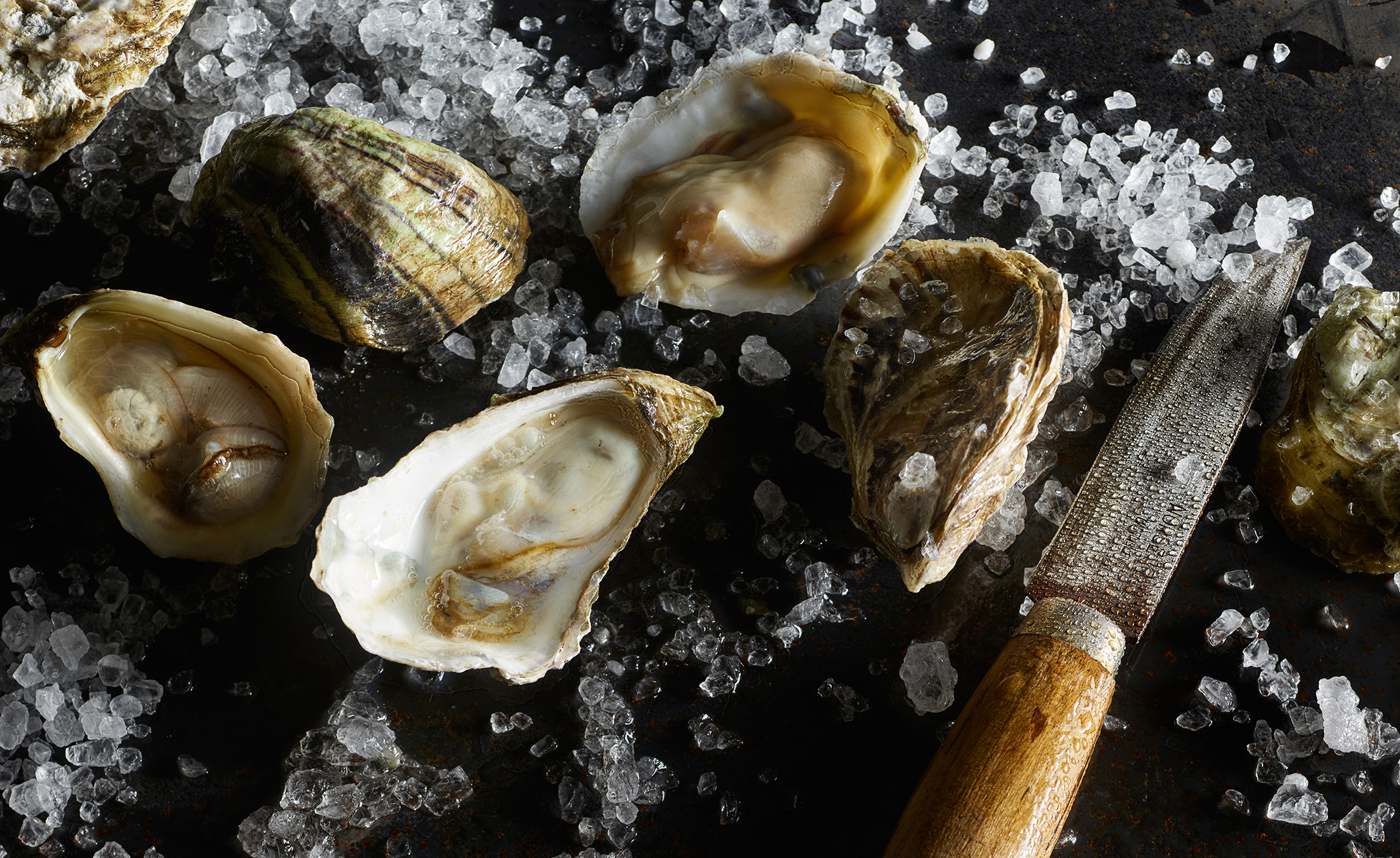oysters-knife-web.jpg