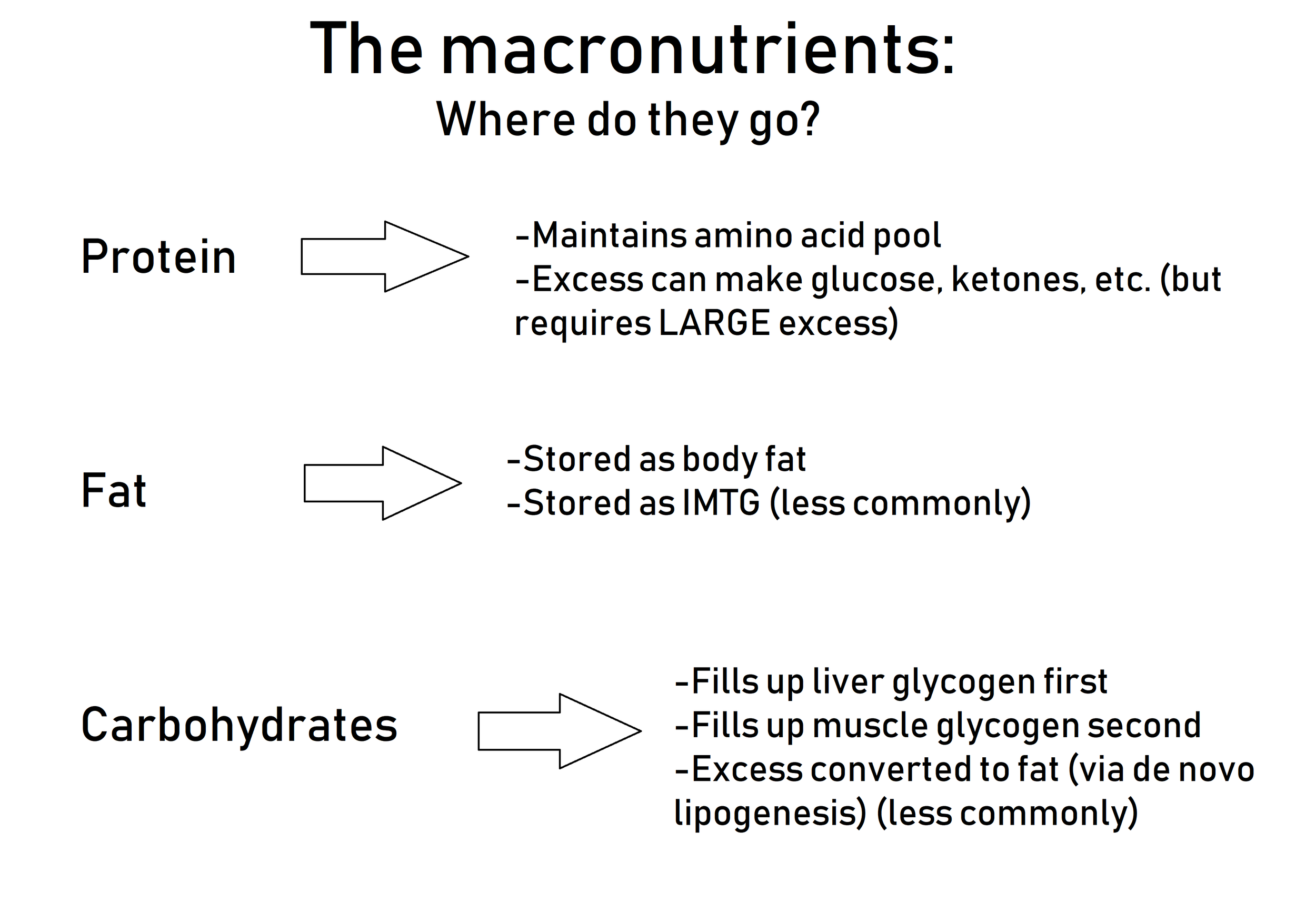 "Where each macronutrient ultimately goes after digestion and absorption.  Each one has some other destinations not listed here, but these are the most pertinent for our purposes.  Not listed here is the fourth macronutrient, alcohol, which does not directly go into any ""storage compartment in the body.""  Rather, the body holds off on dealing with any other macronutrient and preferentially metabolizes alcohol once it has been ingested.  Alcohol bypasses normal metabolic processes and is sent straight into the bloodstream."
