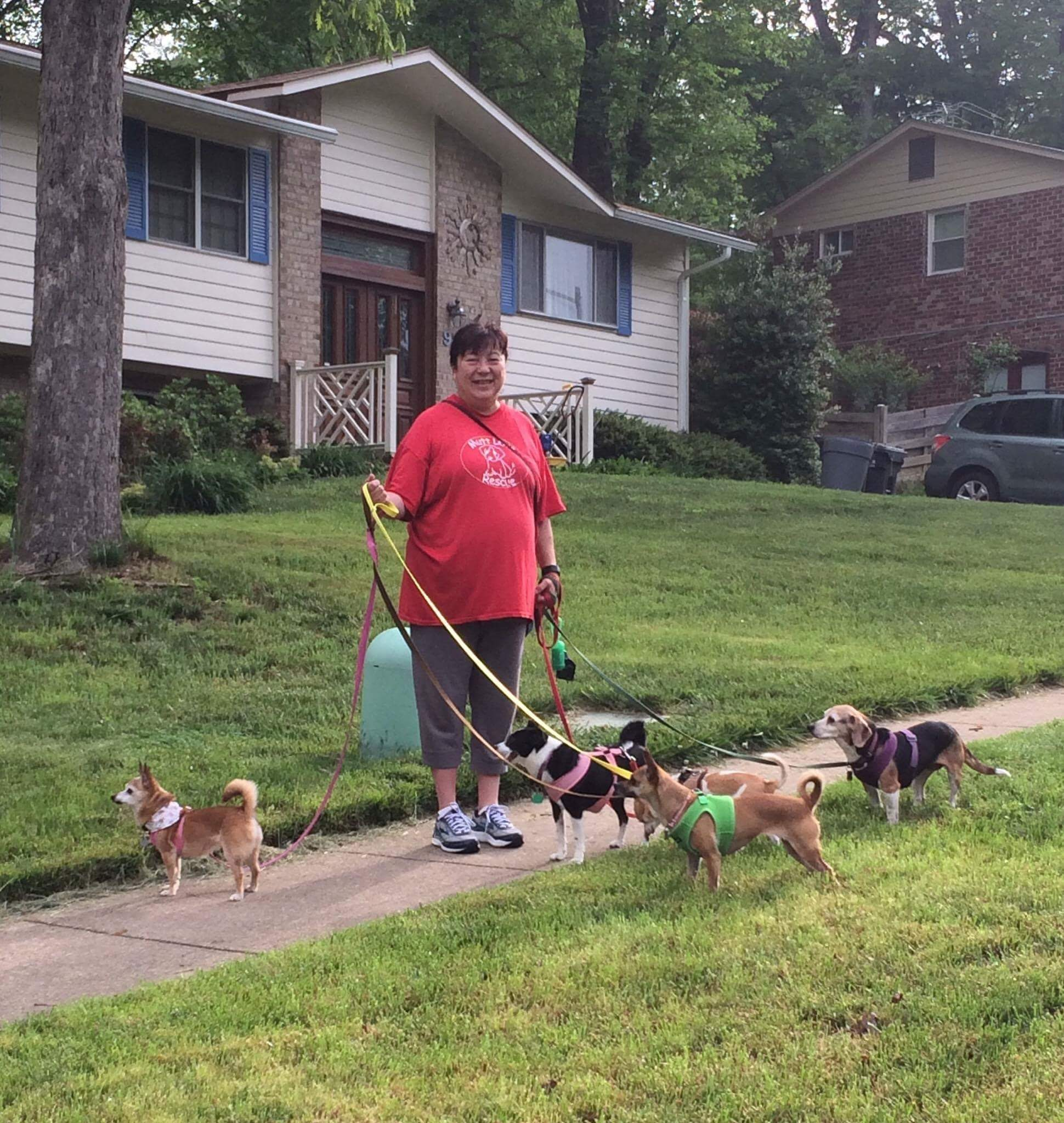 Cathy with some of her doggy pals before her physique work began.