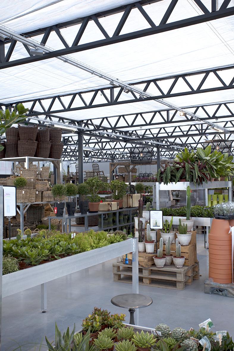 Grönkvist Blomsterhandel - insida