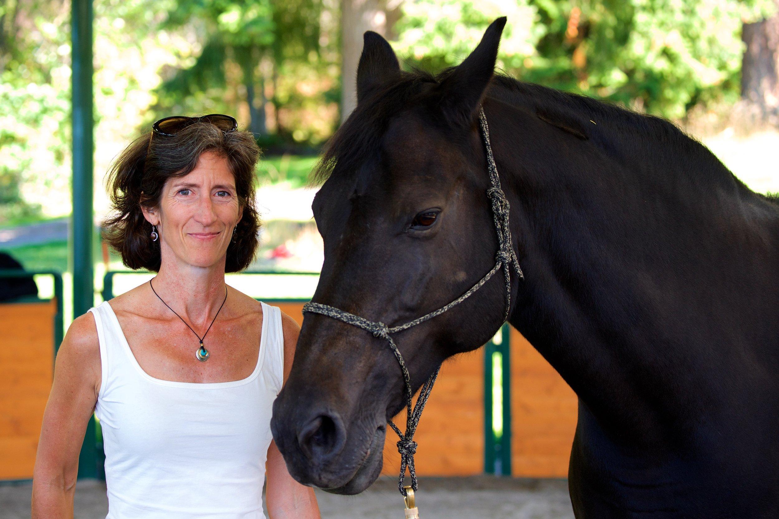 Virginia Rhoads on Equine Coaching, coaching with horses