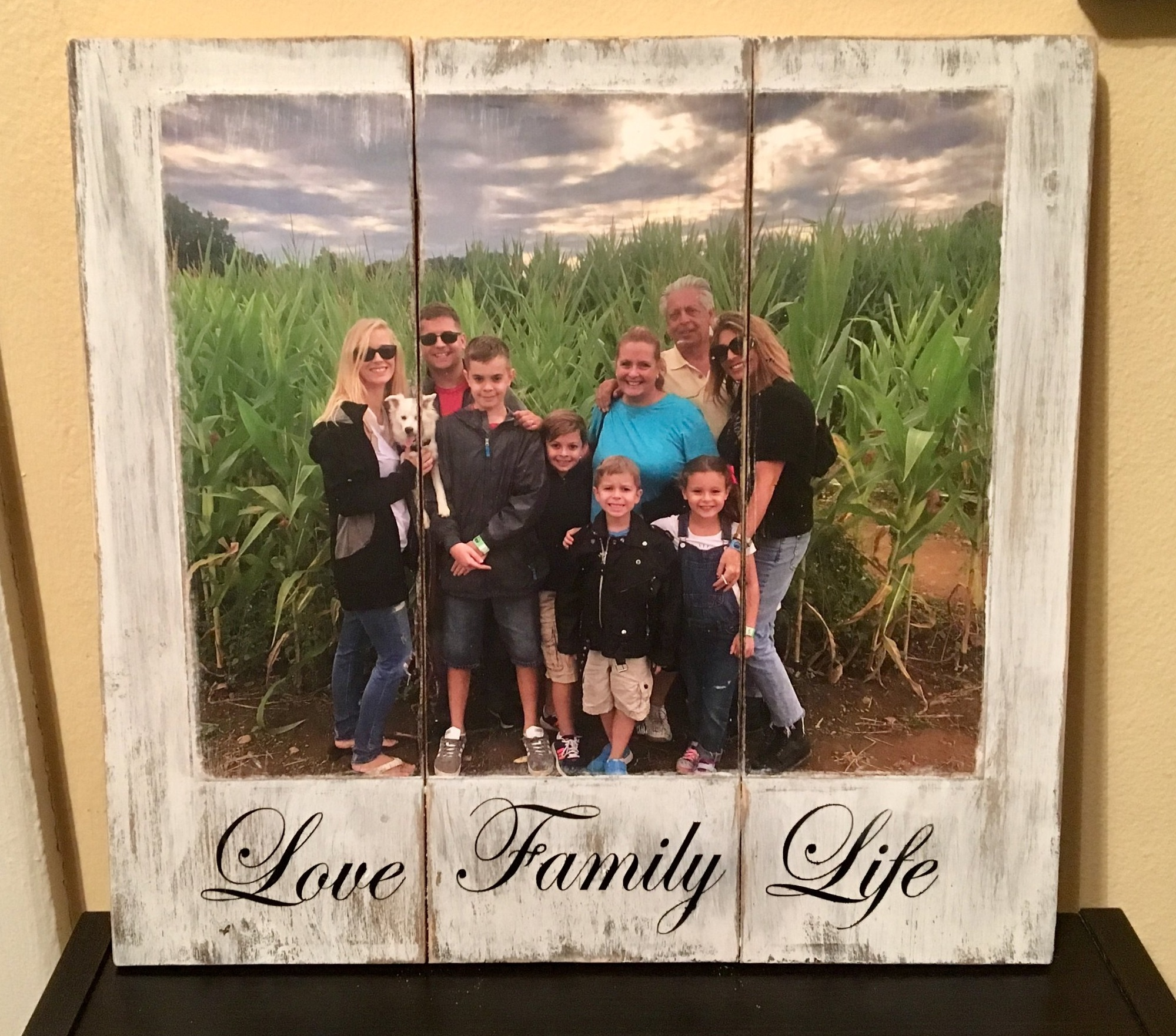 Family PhotosWeddingAnniversaryBirthdayChildrenPetsVacation -