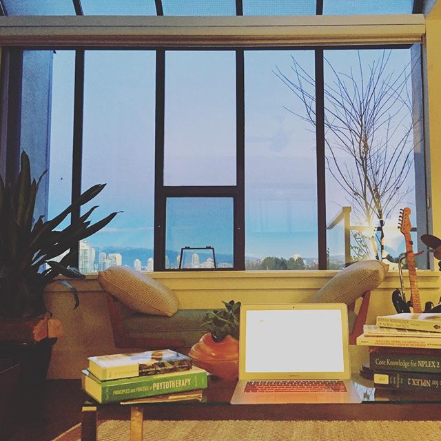 Hibernation Station. 📚 Have been humming along here these last few months, getting quiet & clear, and planning a bloom come spring 🌱 Wishing a Big Hopeful Happy 2019 to all my plant people and I'll see you on the other side!✌🏻 #herbnerdsunite
