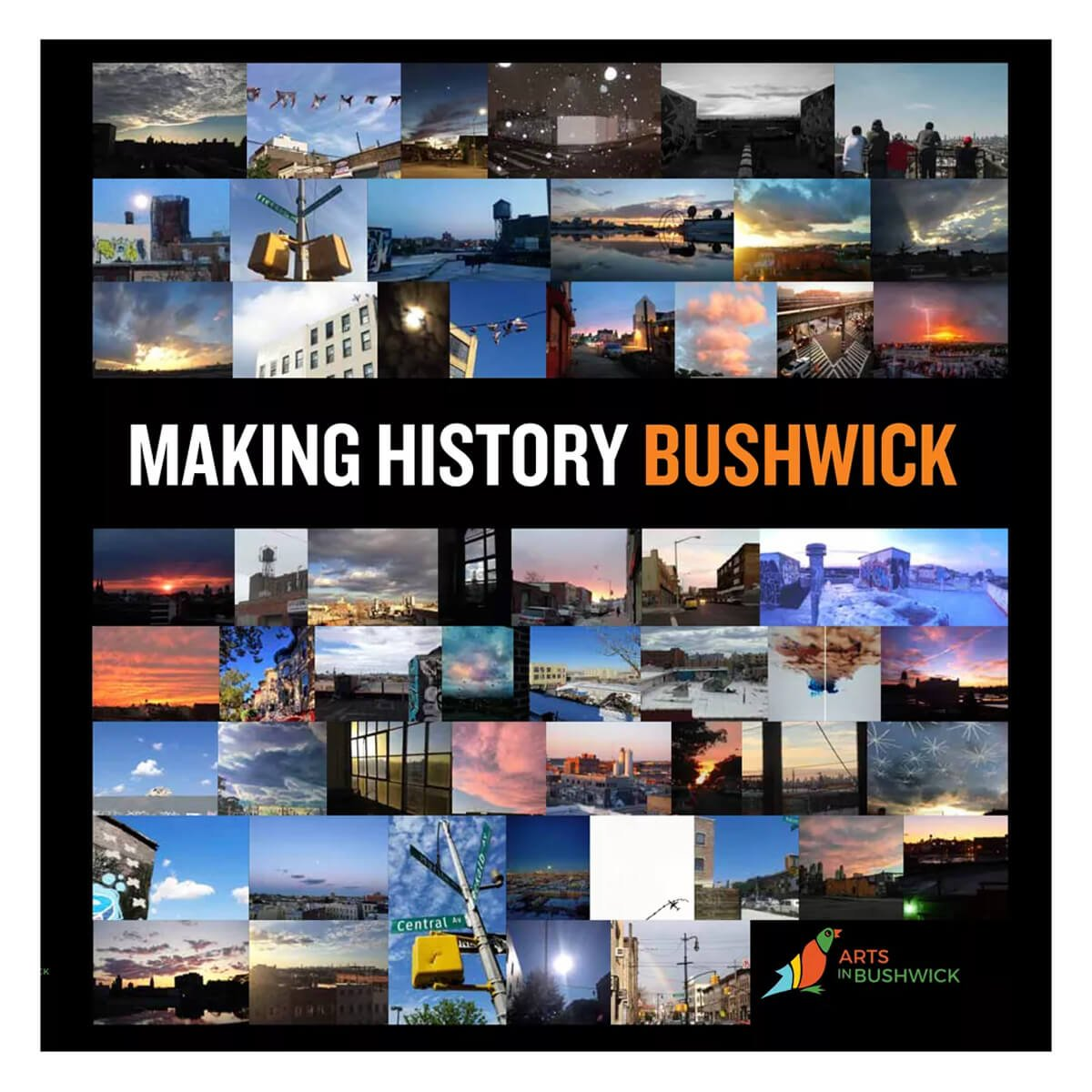 "MAKING HISTORY BUSHWICK      Chapter on ""Making History"""