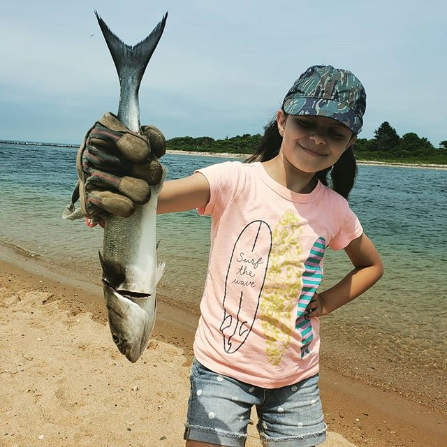 I never caught a bluefish from Coast Guard Beach. She just did.