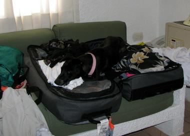 Making sure they pack me too.