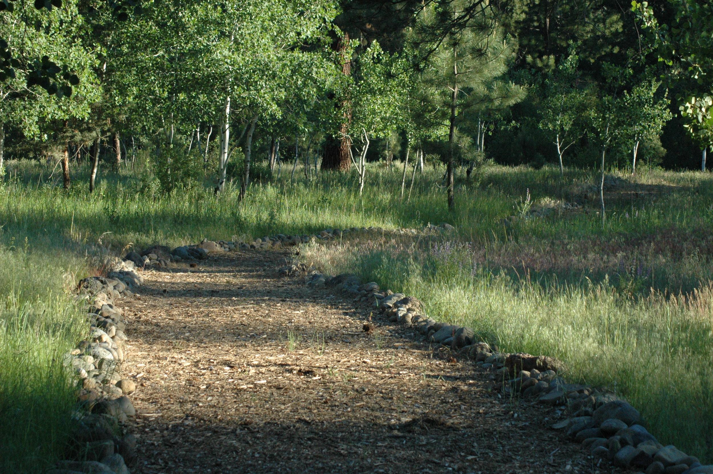 Path To Creek (1).jpeg