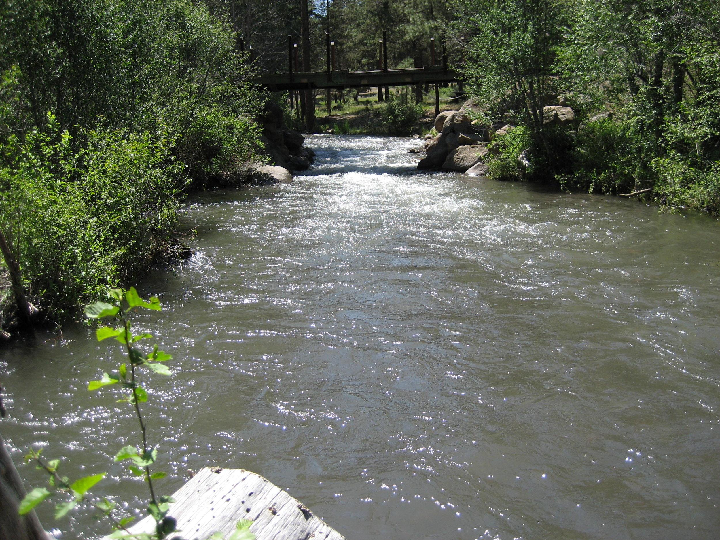 Whychus Creek (1).jpeg