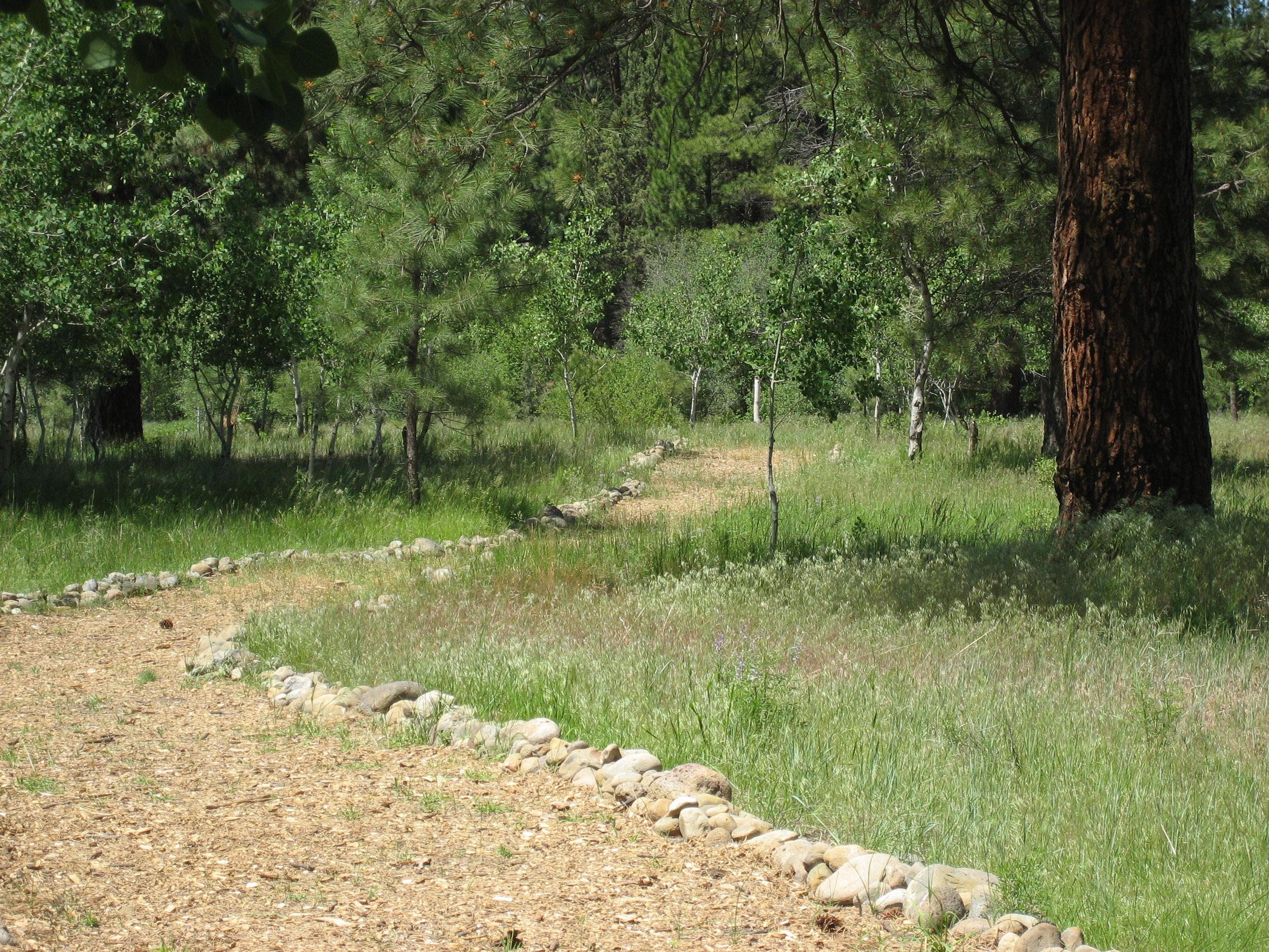 Path to Creek (2).jpeg