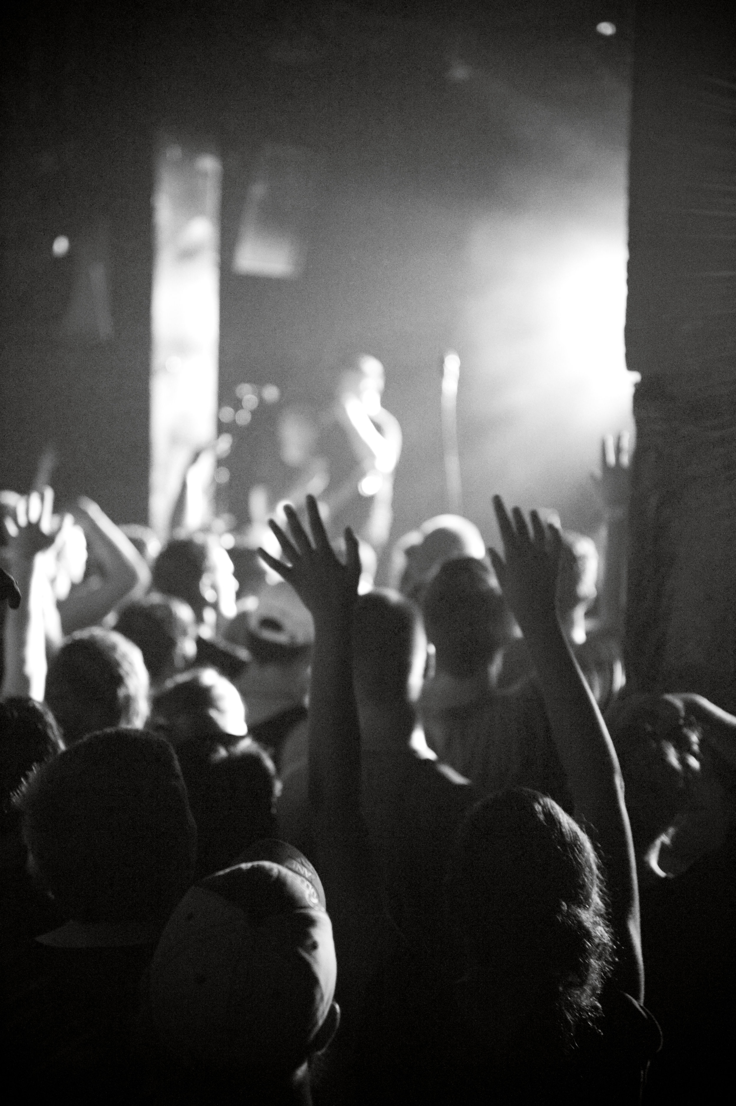 Fans cheering during  The Amity Affliction 's performance. Photo by  Michelle Waters .