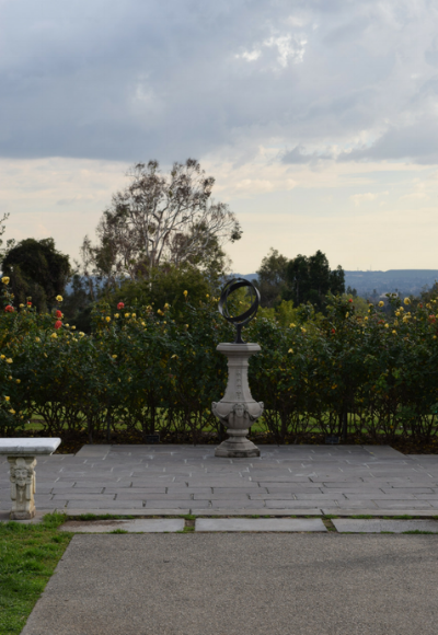 Another view of the rose garden.