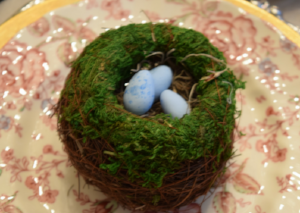 Bird nests with caramel speckled eggs.