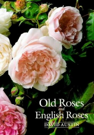 This is also another great book full of good information and extra information on the English roses by David Austin.