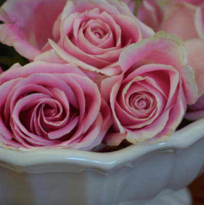 roses-in-an-ironstone-tureen (4) (1).png