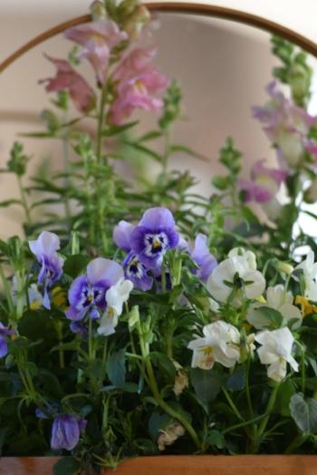 Flowers-in-a-basket